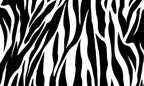 zebra_print_texture_by_ghoulskout