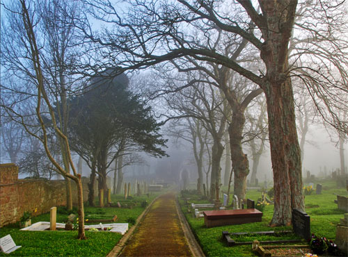 Foggy Path Through the Churchyard