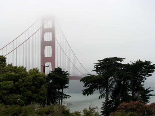 Foggy Day on the Bay
