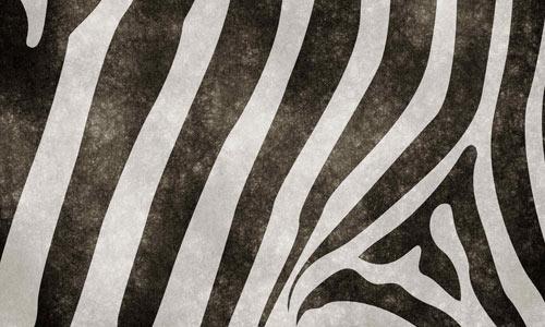 Zebriland Grunge texture