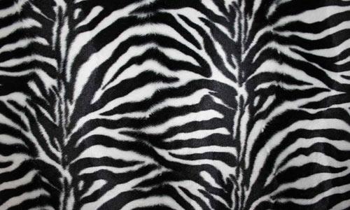Texture: Animal Print 1