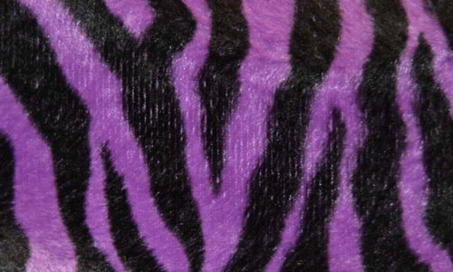 purple and black zebra print