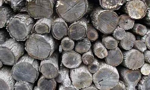 Wood-Stock1 texture