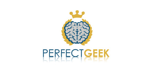 perfect geek logo