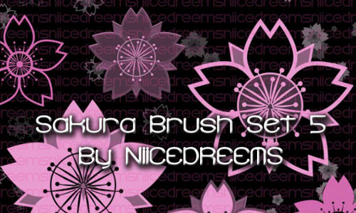Sakura Brush Set 05