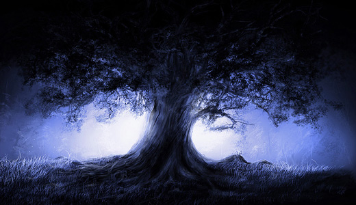 Blue night trees free download wallpapers high resolution hi res