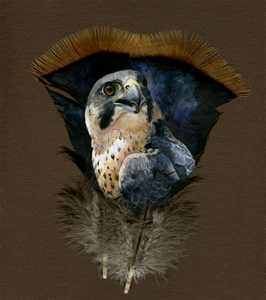 Peregrine feather painting