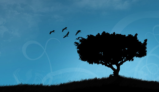 Vector digital black trees free download wallpapers high resolution hi res