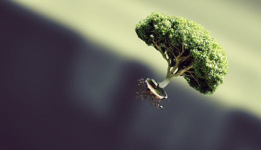Miniature small green trees free download wallpapers high resolution hi res