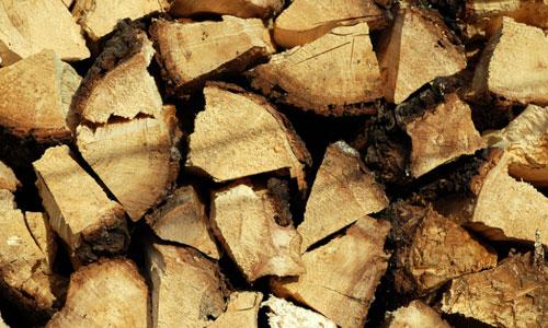 Log Texture