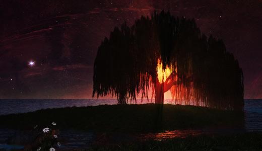 Dark sun fantasy trees free download wallpapers high resolution hi res