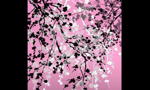 cherry blossom branches