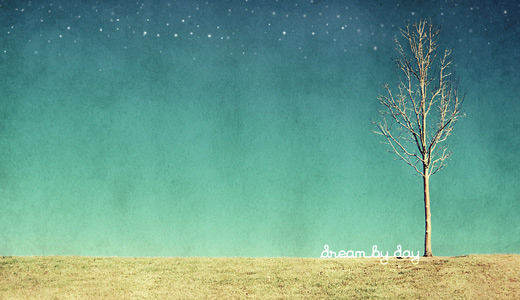Dead cute trees free download wallpapers high resolution hi res