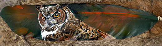 Great owl feather painting