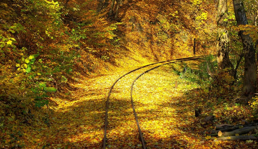 Autumn fall leaves railroad free download wallpapers