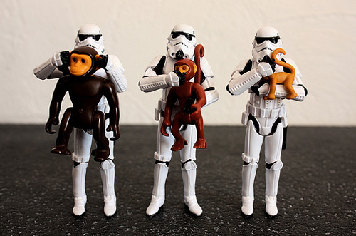 Monkey stormtrooper photogprahy