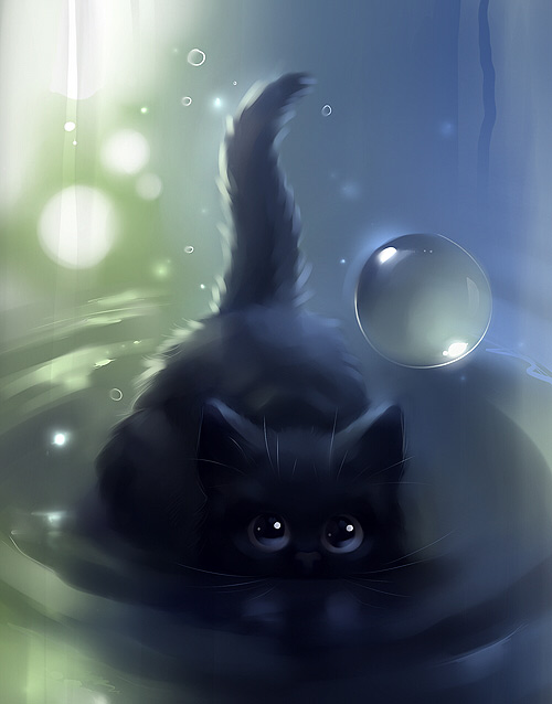 Black cat swimming