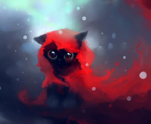 Red riding hood cat black