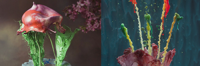 Interview with Photographer Jack Long on His Liquid Sculptures of Flowers