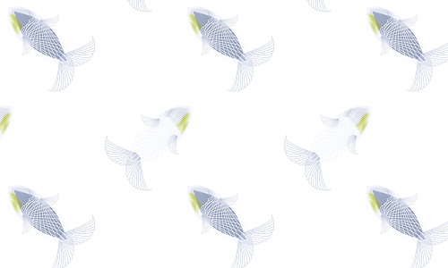 White free fish patterns