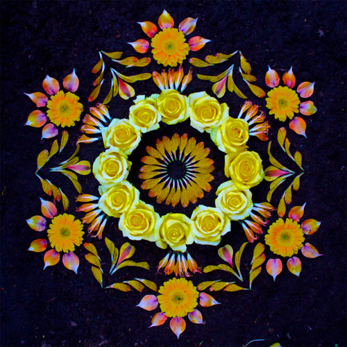 Kathy Klein Flowers danmala