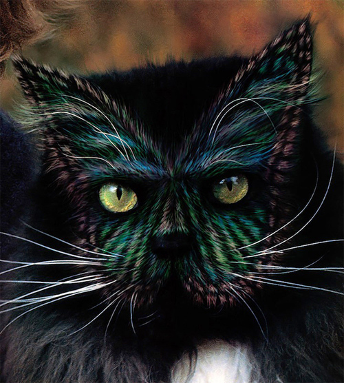 Burton Silver Heather Busch Why Paint Cats: The Ethics of Feline Aesthetics