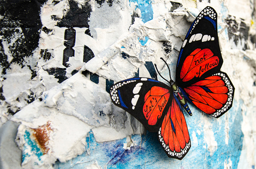 Andreas Preis featured Butterflies effect