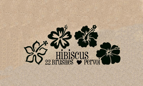 Beautiful free hibiscus brushes