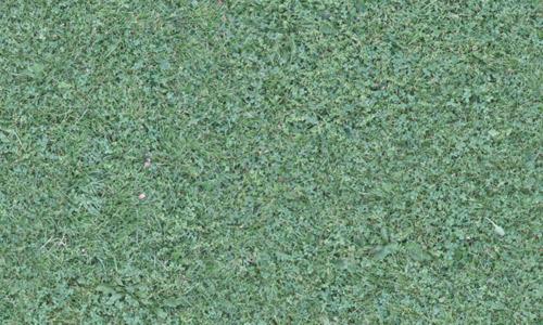3D seamless grass textures free