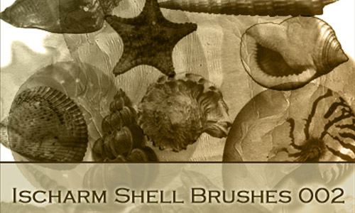 Cool shells photoshop brushes