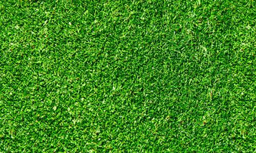 green seamless grass textures free