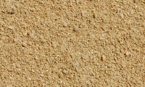 Grain sand seamless texture free