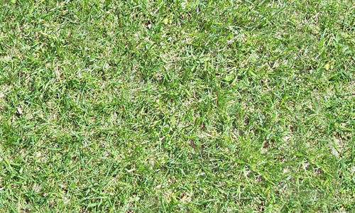 background seamless grass textures free