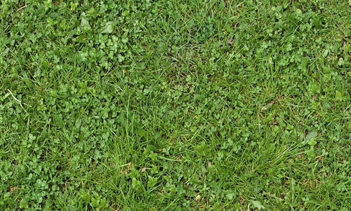 cool seamless grass textures free