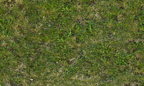 beautiful seamless grass textures free