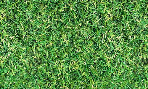 pat seamless grass textures free