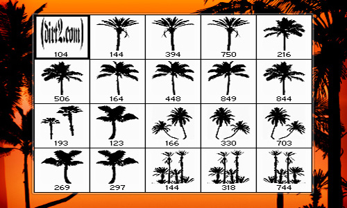 A Mini Collection Of Free Palm Tree Brushes For Photoshop