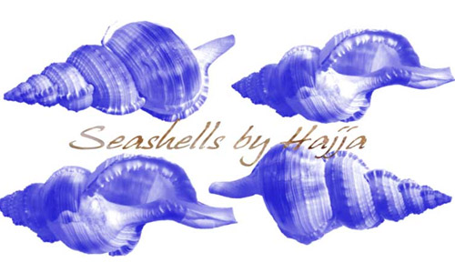 Photoshop shells photoshop brushes