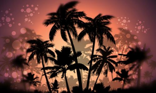 Free Photoshop free palm tree brushes
