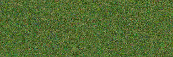 Absolutely Free Seamless Grass Textures