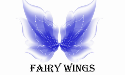beautiful fairy wing brush