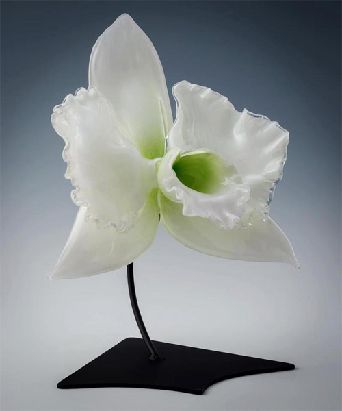 white flower glass art Jason Gamrath featured