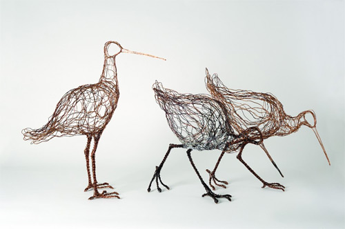 godwits wires Celia Smith featured