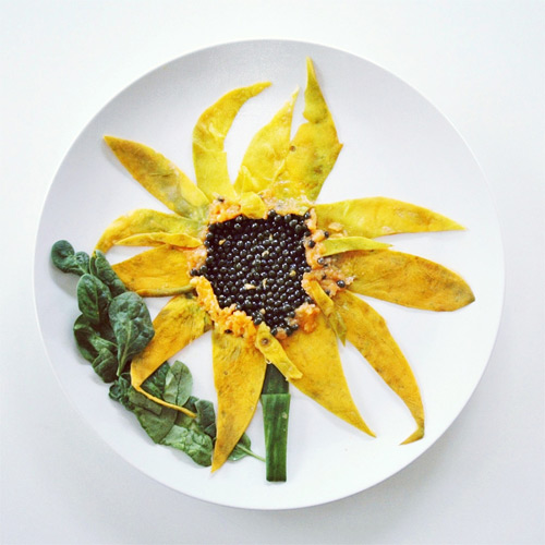 sunflower Culinary Canvas Lauren Purnell featured