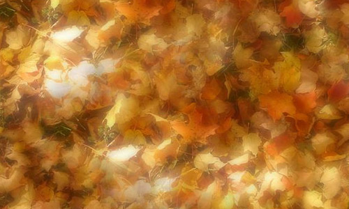 milky leaf texture