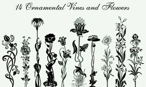 floral ornamental brushes free