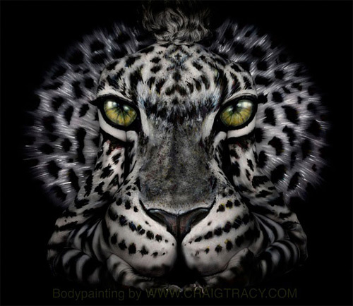 feral leopard Craig Tracy featured