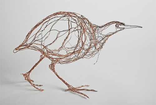 bittern wires Celia Smith featured