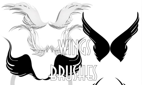 wings brushes set