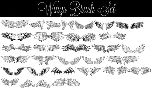 wing brush pack